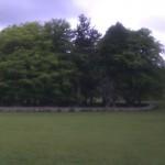 Kildermorie Lodge grounds